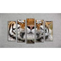 "Модульная картина ""Тигр"" (130х70)"