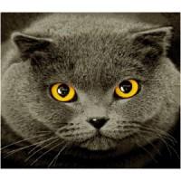 "Наволочка ""Британская кошка"" (45х45)"